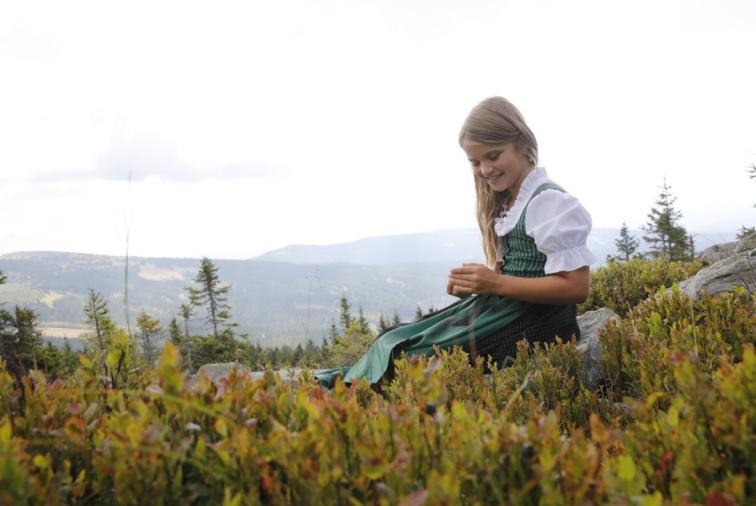 Herbst - Urlaubspauschale im Joglland