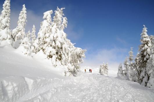 Winterwandern und Wanderurlaub Steiermark